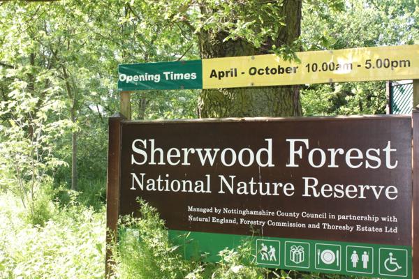 Sherwood1